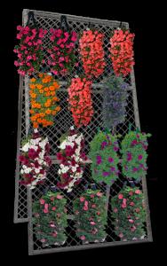 Merchandising-plants-in-rack