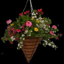 Cone Basket