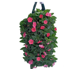 325-Pink-Petunia-Pouch